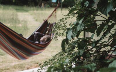 7 Sentidos Chalets – Übernachten & Slow Down in Bischofsmais