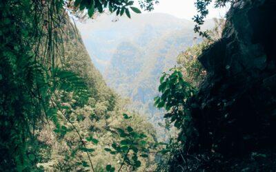 Madeira Levada-Wanderung zur Caldeirão Verde