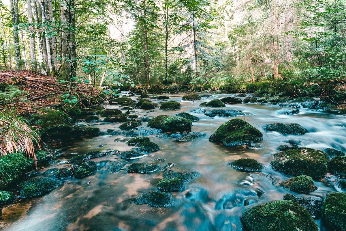 nationalpark-sagwasserklause-bach-felsen