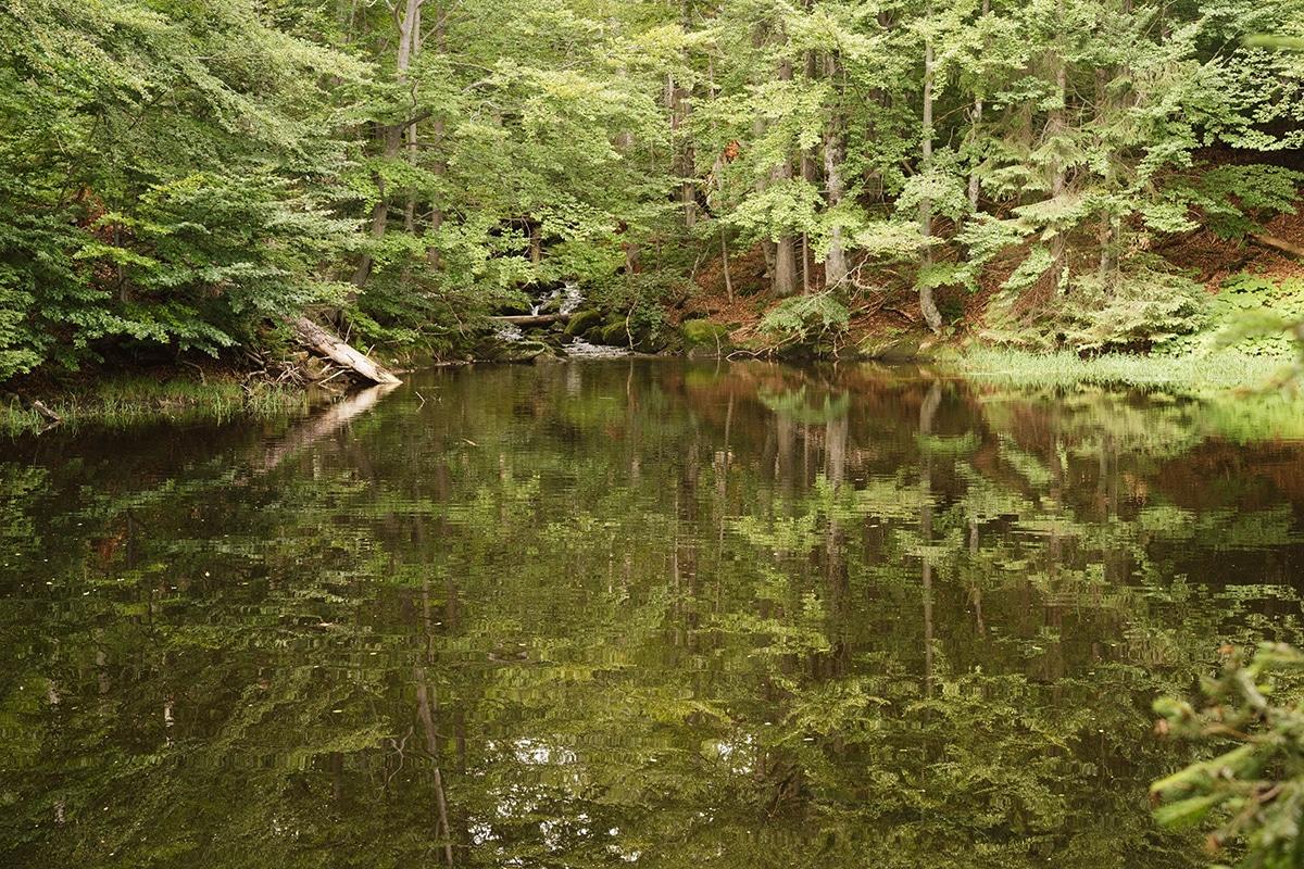nationalpark-sagwasserklause-see