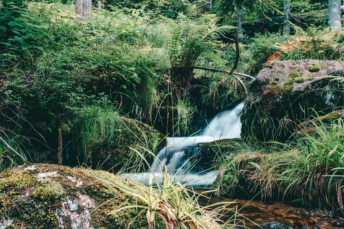 nationalpark sagwasserklause-wasserfall-steine