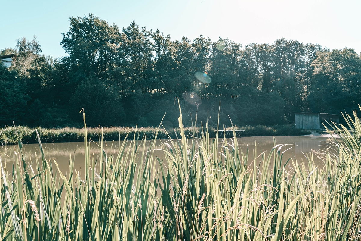 schnitzmuehle-lagune