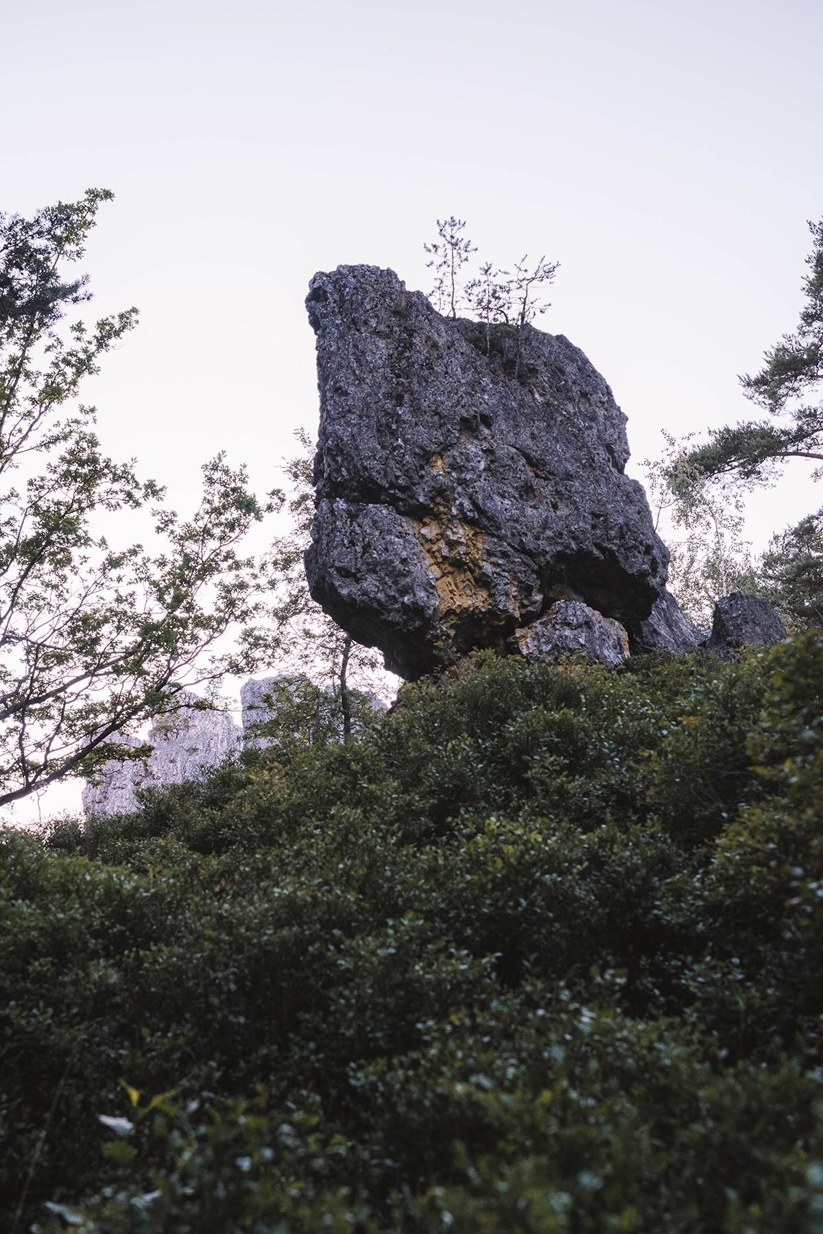 viechtach-pfahl-felsen-strauecher