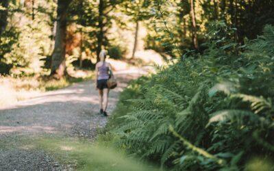Adventure Camp Schnitzmühle Viechtach: Wanderungen und Übernachten im Camp