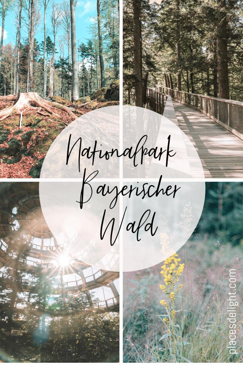 placesdelight-nationalpark-bayerischer-wald-collage-01