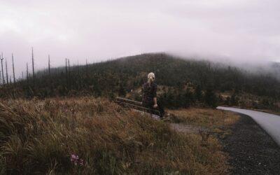Wandern Bayerischer Wald – Touren und Wanderwege für jeden Geschmack