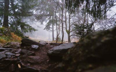 Bad Kötzting Bayerischer Wald: Herbstwanderung am Kaitersberg