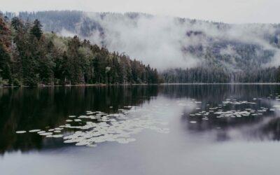10 Highlights für deinen Urlaub im Bayerischen Wald