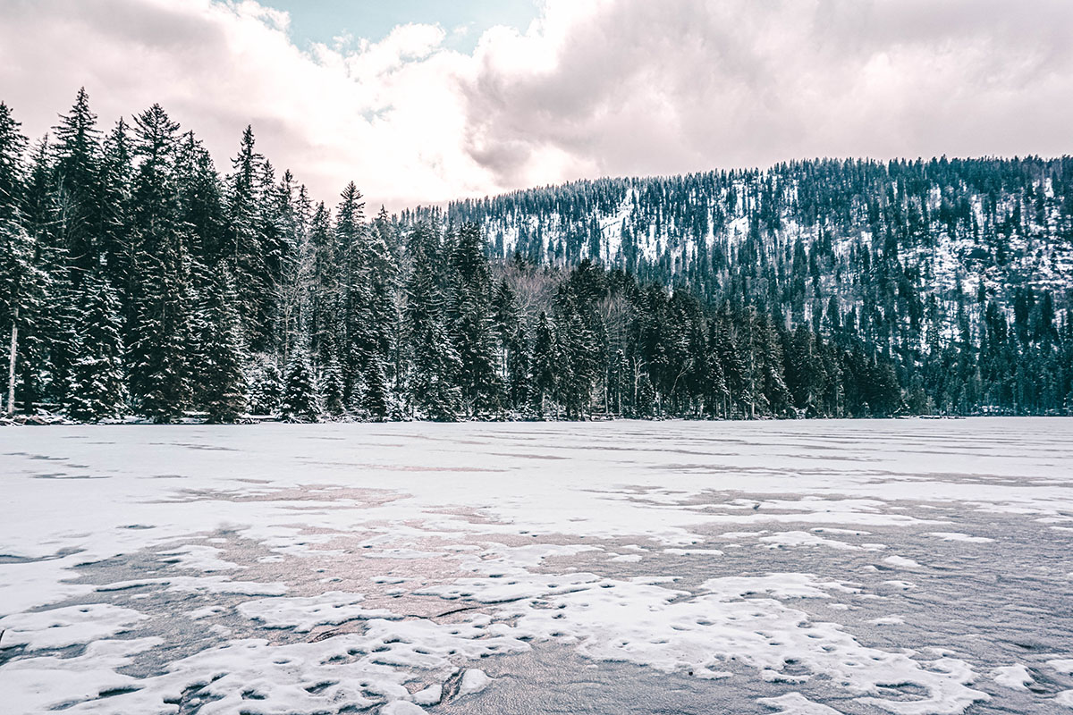 grosser-arbersee-winter