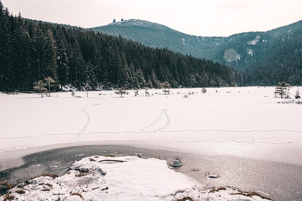kleiner-arbersee-winter