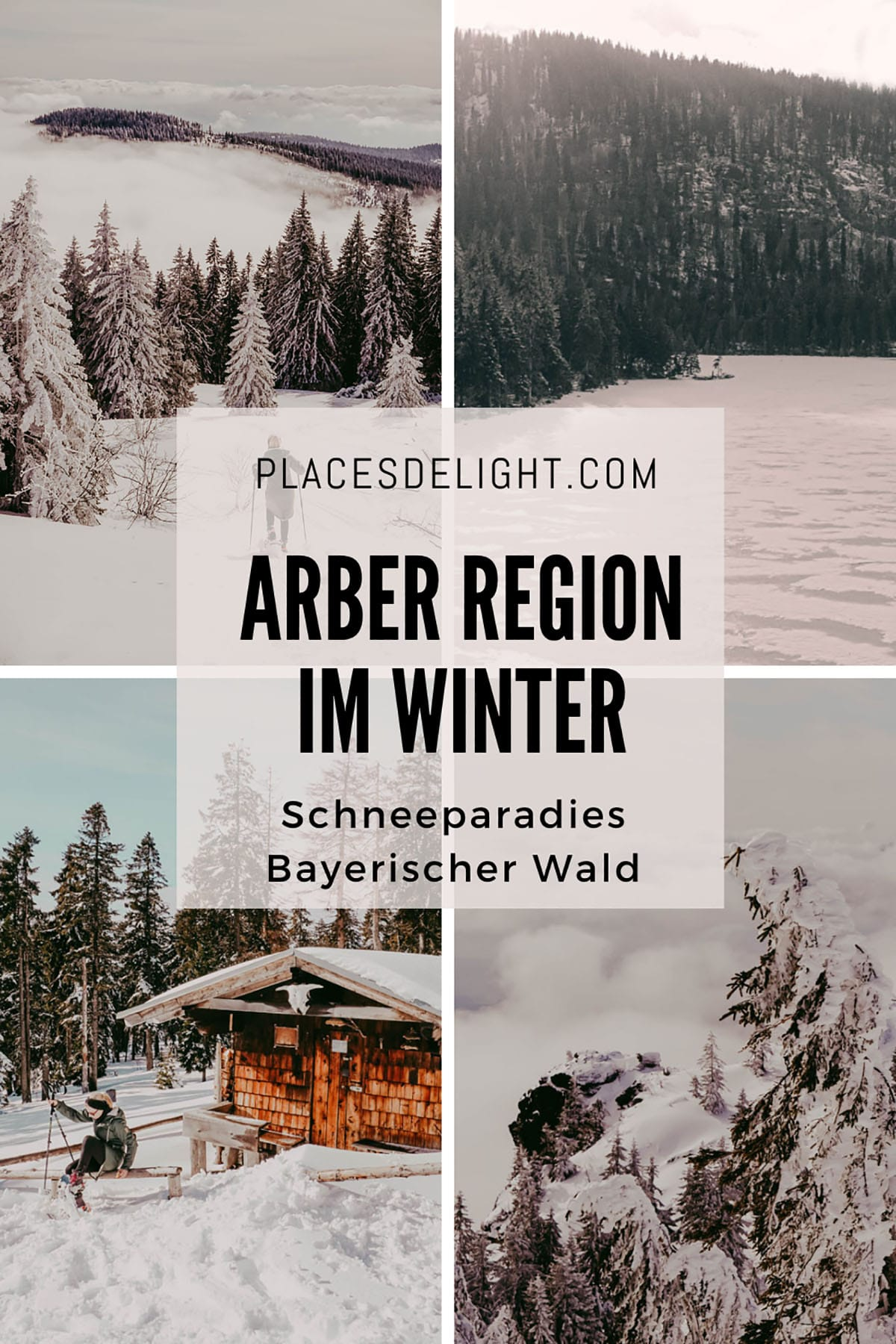 arber-region-winter-bayerischer-wald-placesdelight