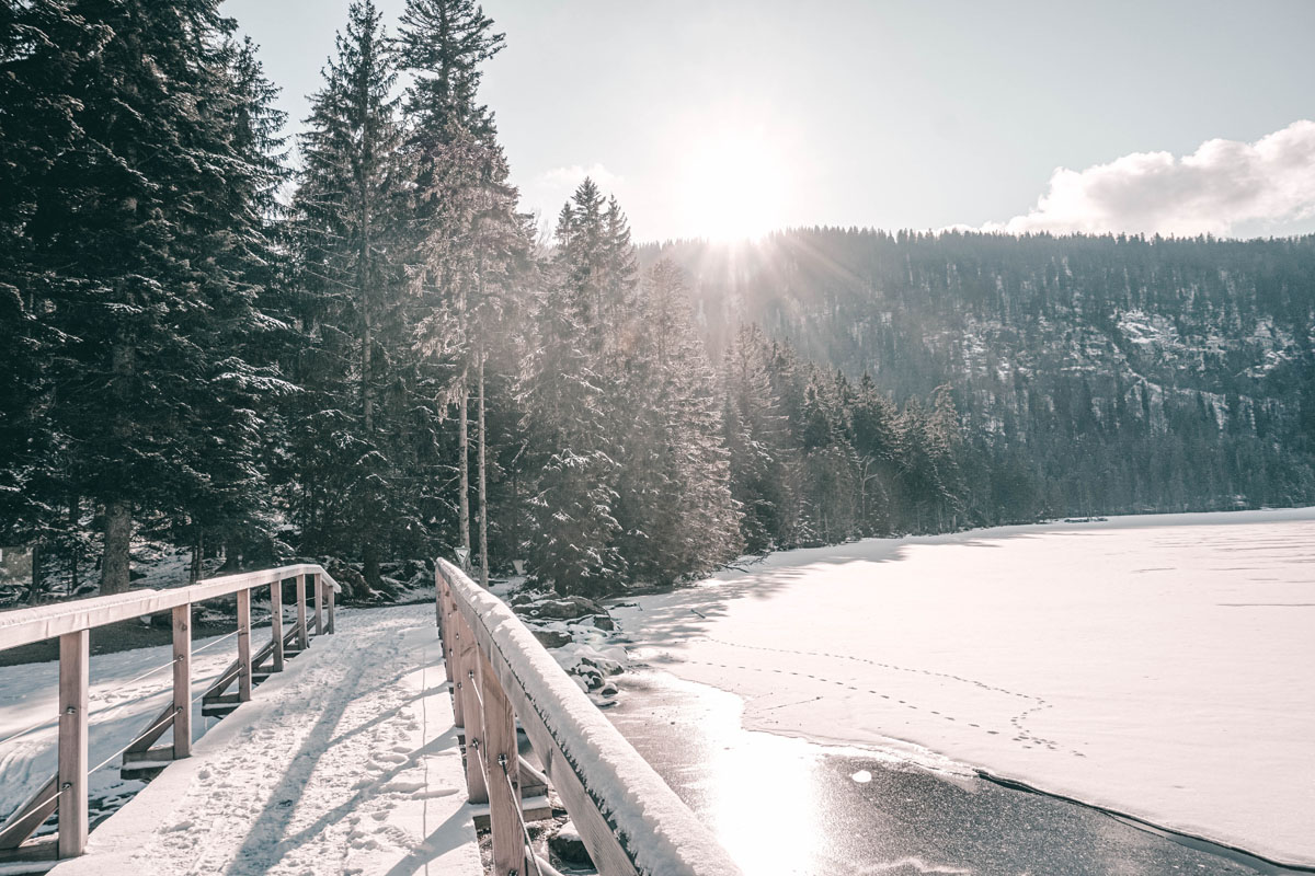 arber-winter-arbersee-bruecke