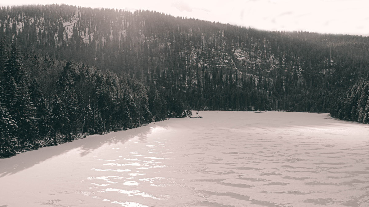 arbersee-winter