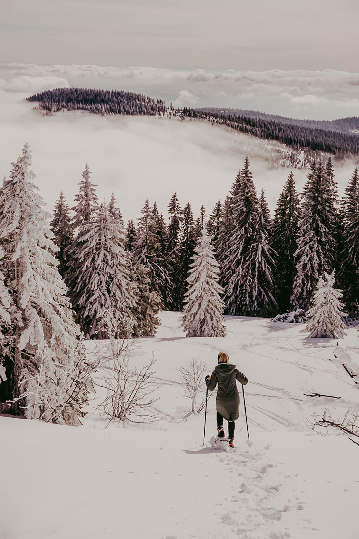 arber-winter-schneeschuhwandern-frau-wald