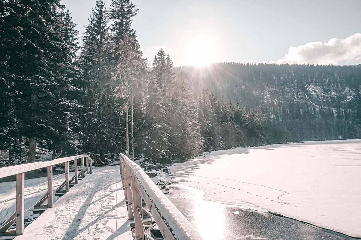 arber-see-winter-bruecke