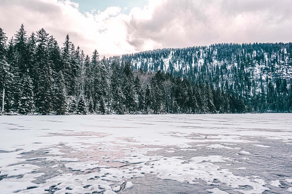 arber-see-winter