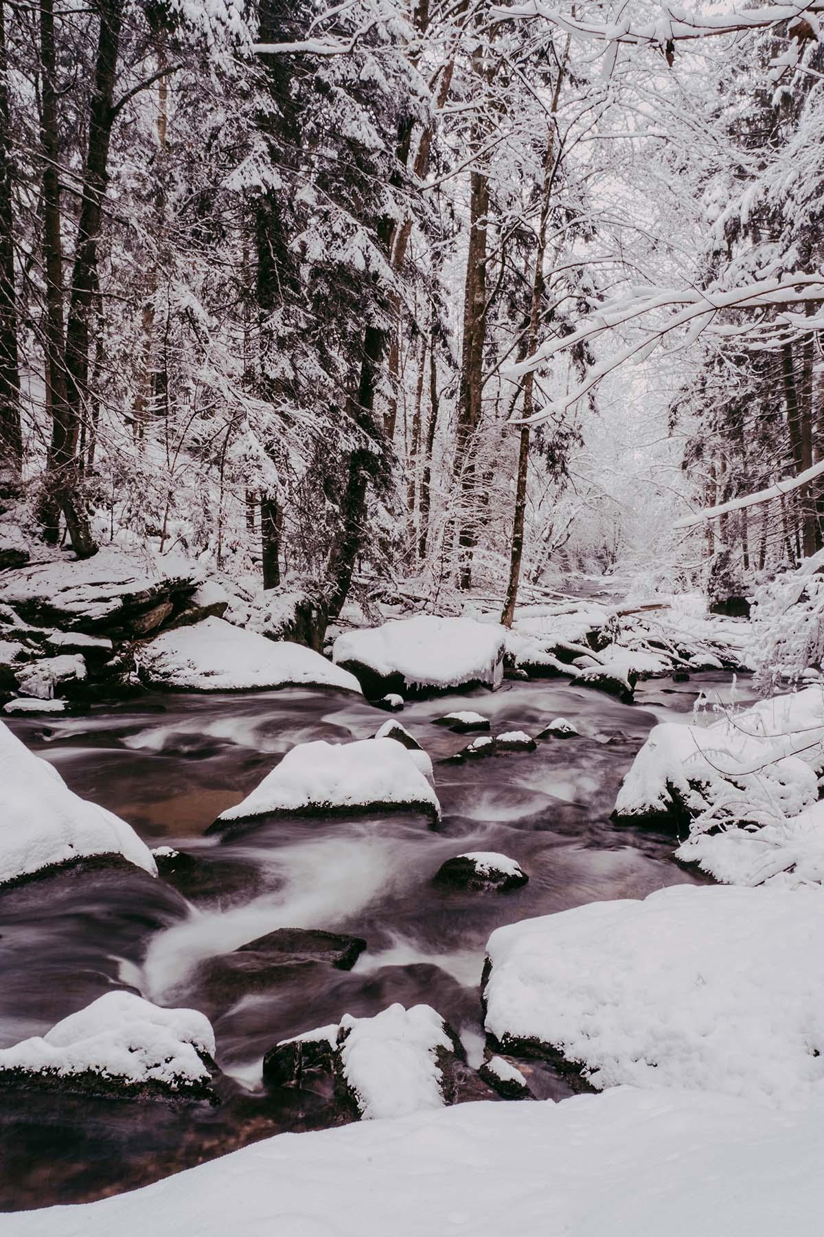 baernloch-winter-schnee