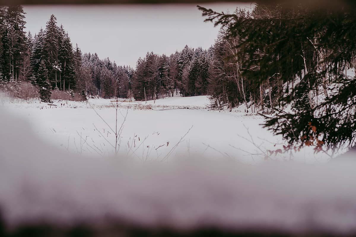 dreiburgensee-winter-schnee