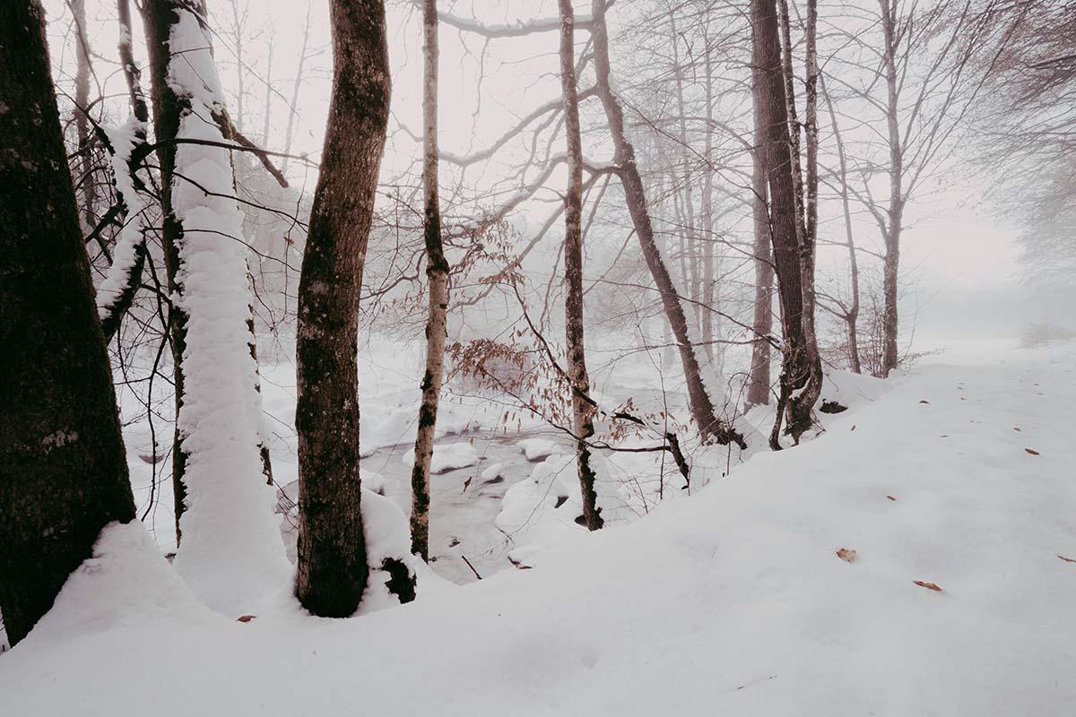 ilz-winter-landschaft