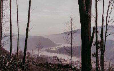Jägersteig Obernzell – Wandern an der traumhaften Donau