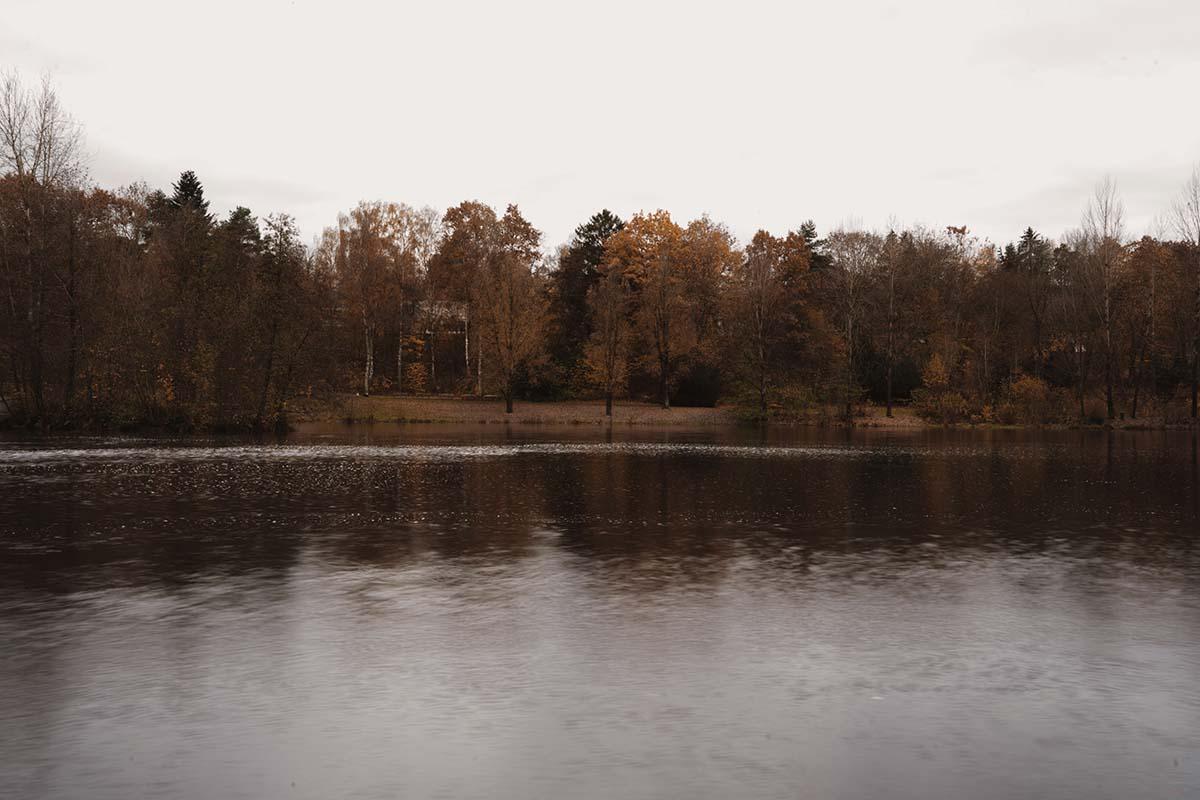 kurpark-grafenau-winter-see