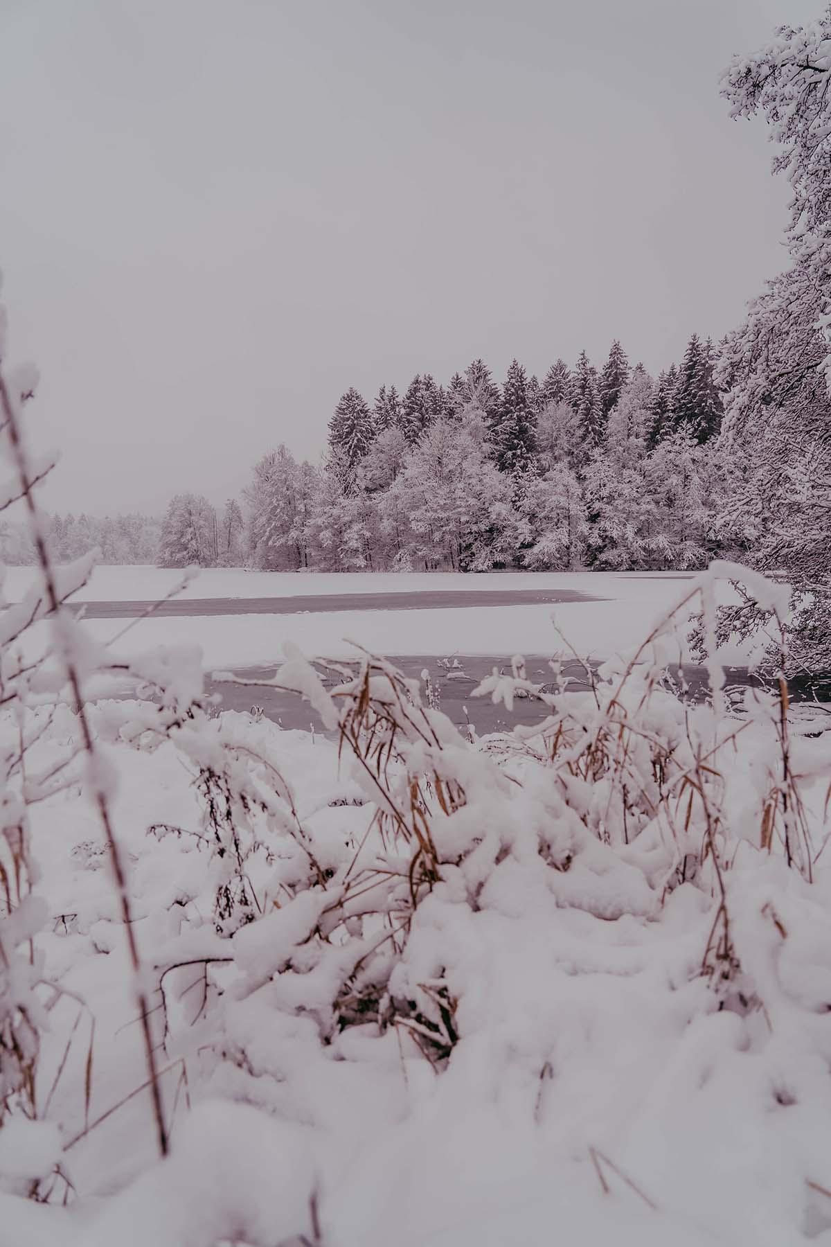 rannasee-winter-schnee-02