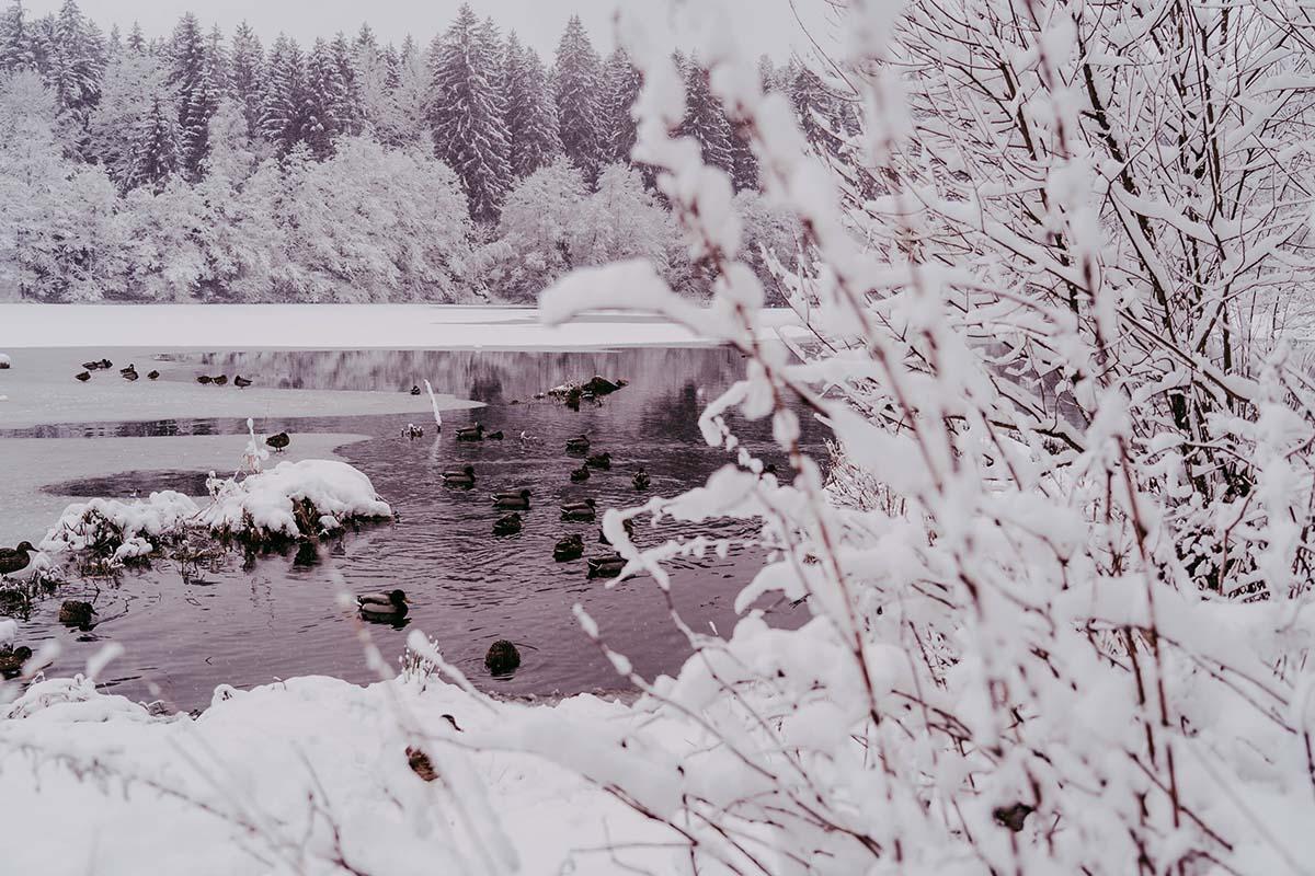 rannasee-winter-schnee
