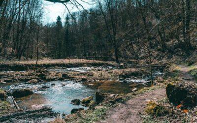 Perlbachtal Neukirchen – herrliche Flusswanderung über Teufelsfelsen und Burg Mitterfels