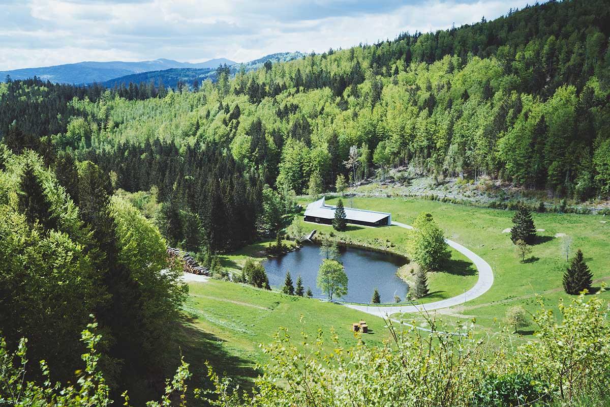 schachtenwanderung-bayerischer-wald-ausblick