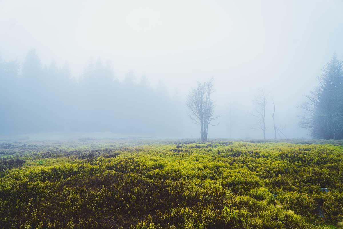 schachtenwanderung-nebel-lindberger-schachten