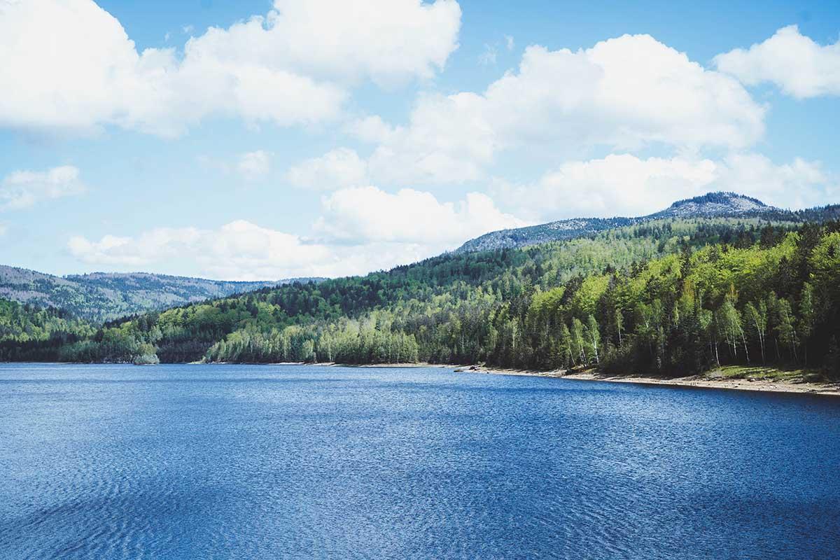 trinkwassertalsperre-frauenau-ausblick-bayerwald