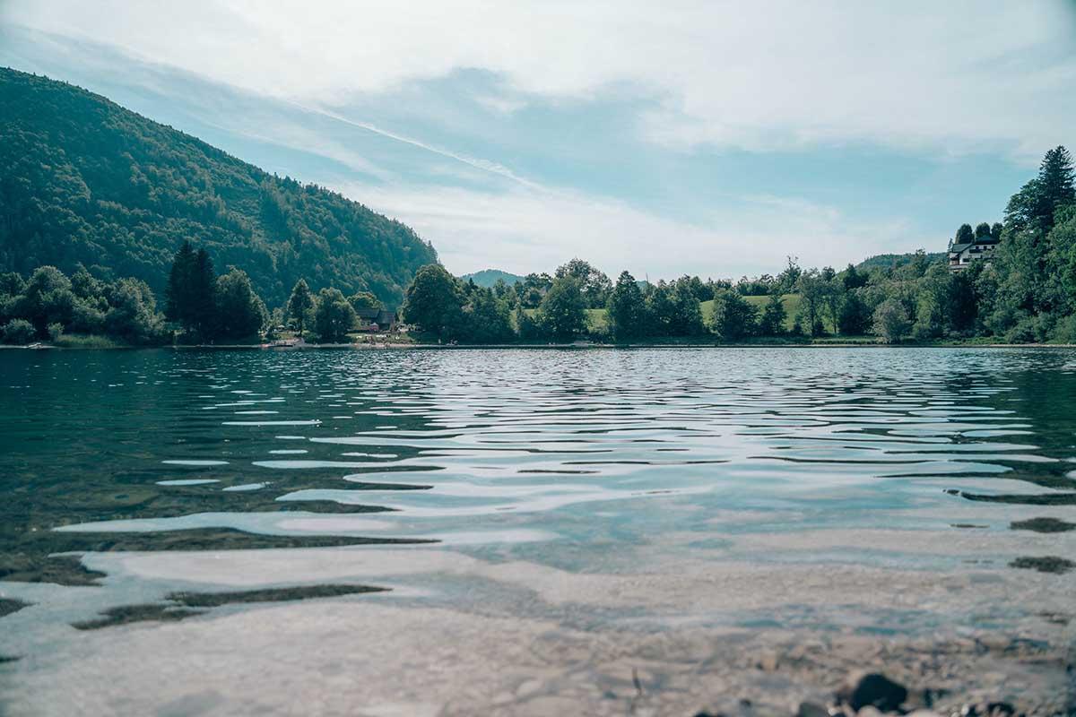 badeseen-oesterreich-hintersee-ufer