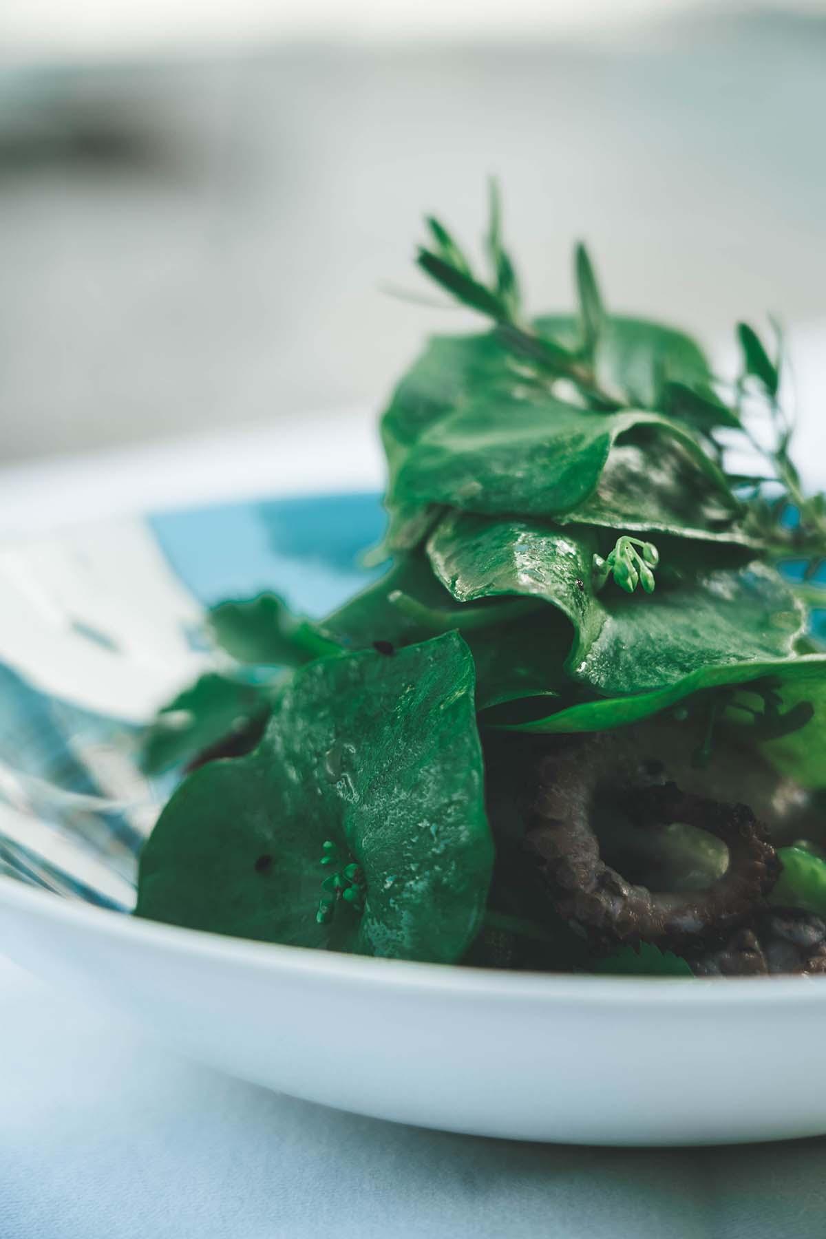 culinarium-passau-restaurant-salat-02