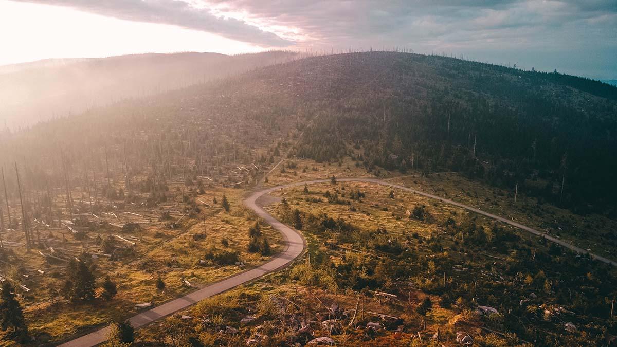 dreisesessel-wandern-panorama-wald-weg-baueme-drohne