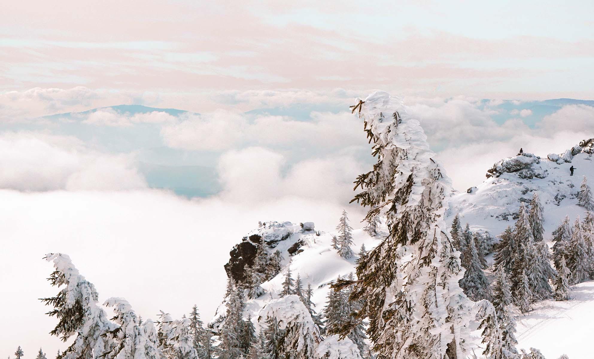 schneeschuhwanderung-arber-landschaft-schnee-wolken-berg
