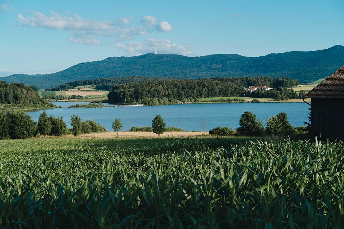 seen-bayerischer-wald-drachensee