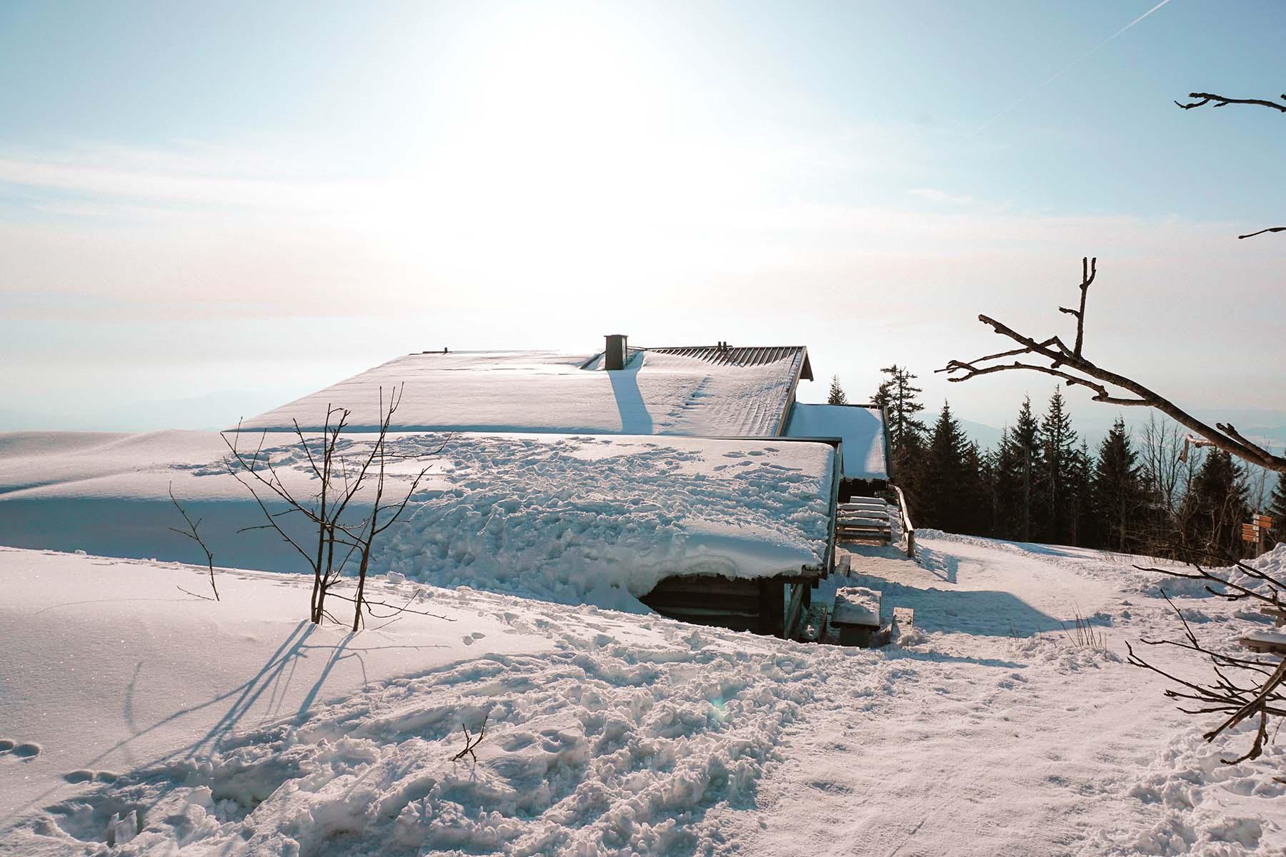 winterwanderung-lusen-lusenschutzhaus-winter-01