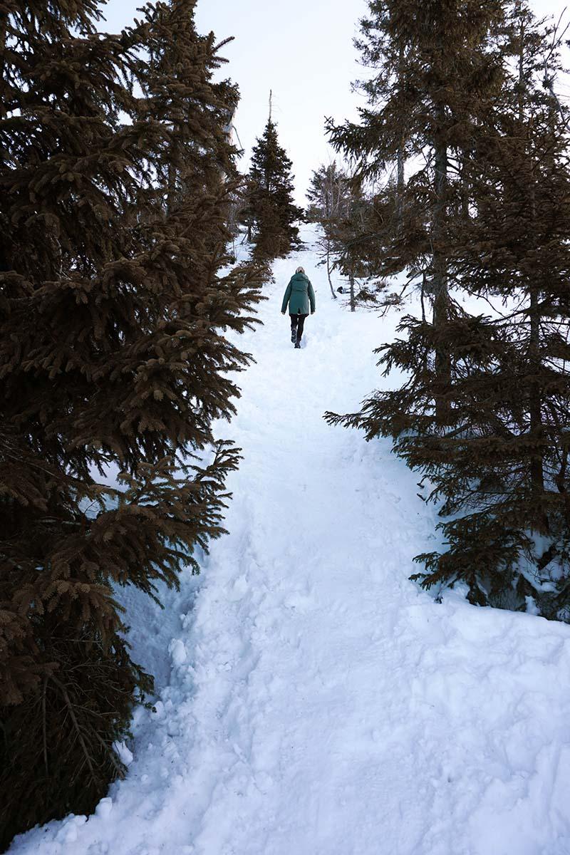winterwanderung-lusen-schnee-frau