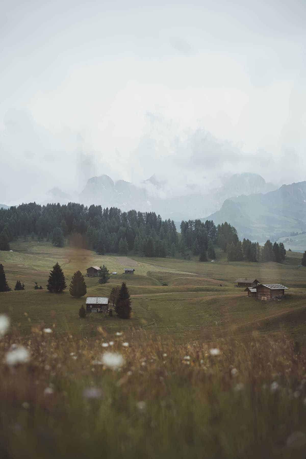 ausflugsziele-wandern-dolomiten-suedtirol-seiser-alm-blumen