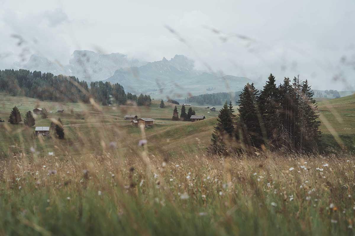 ausflugsziele-wandern-dolomiten-suedtirol-seiser-alm-sommer