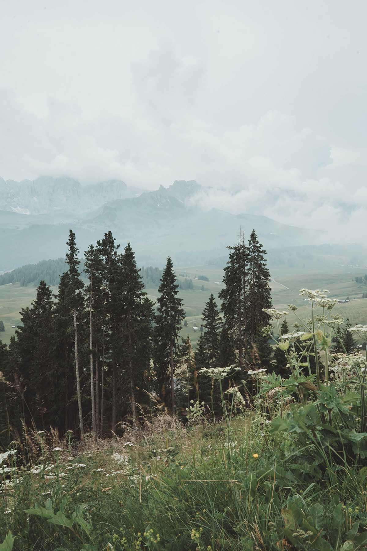 ausflugsziele-wandern-dolomiten-suedtirol-seiser-alm