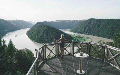 Wandern am Donausteig: Wandertipp Schlögener Schlinge