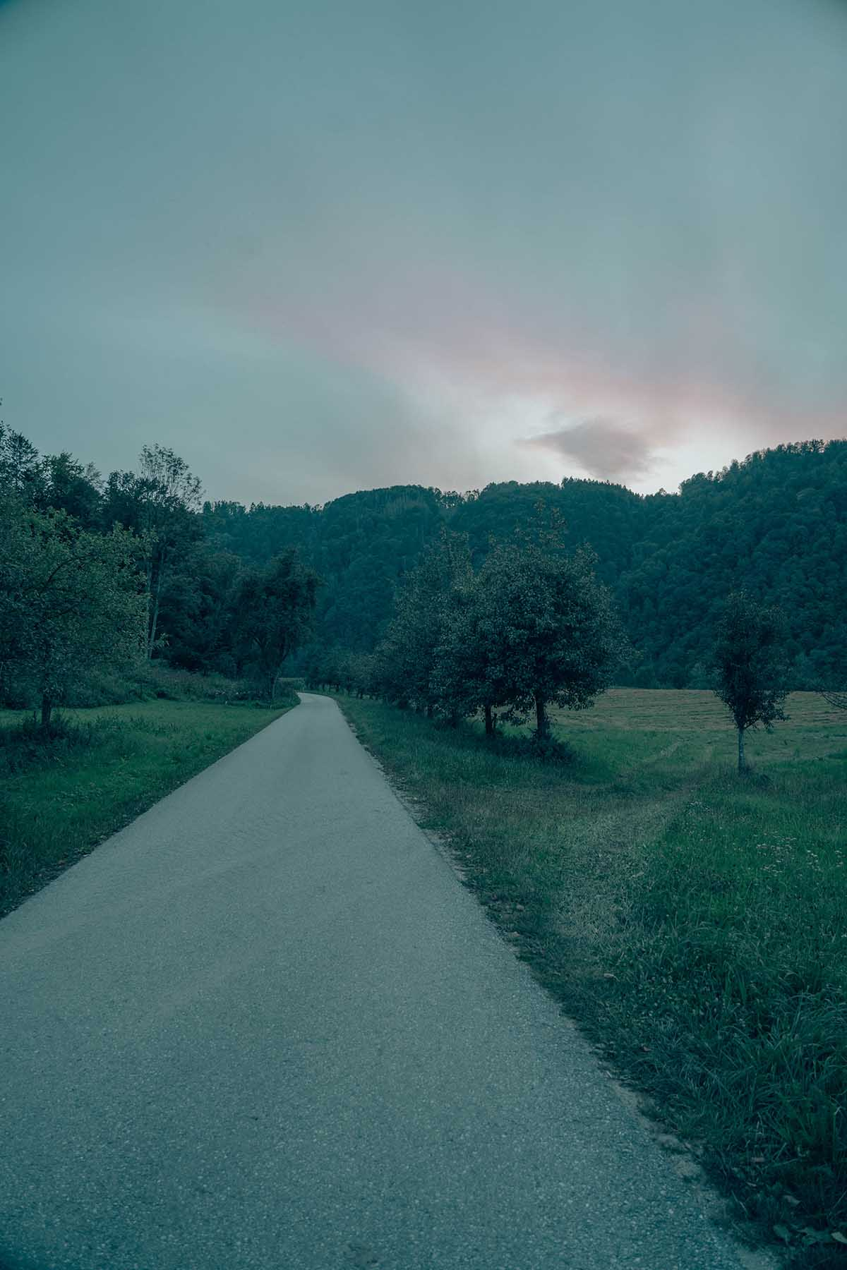 wandern-donausteig-schloegener-schlinge-inzell