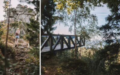 Gemütlich am Arberkamm Wandern: Mühlriegel, Ödriegel & Skywalk
